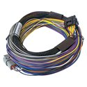 Haltech Elite 550 Wire-In Harness - Basic - 8ft