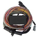 Haltech Elite 550 Wire-In Harness - Premium - 16ft